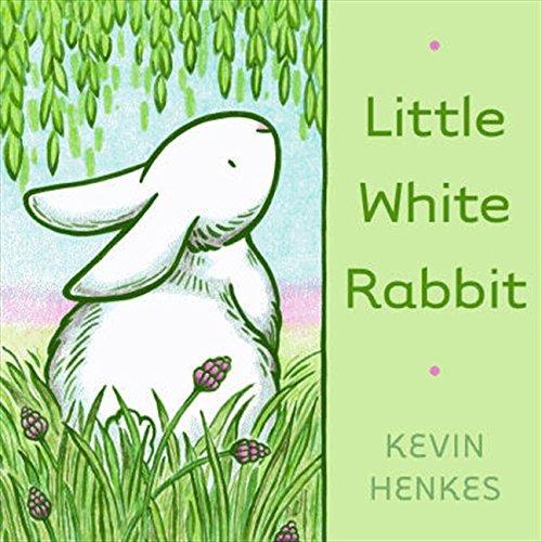 Little White Rabbit ebook