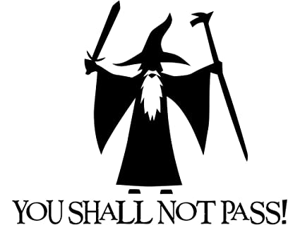 Amazoncom You Shall Not Pass Gandalf New Style Lotr Vinyl