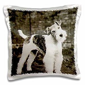"3D Rose Vintage Wire Hair Fox Terrier Dog Circa 1900 Edwardian Era Pillow Case, 16"" x 16"" 47"