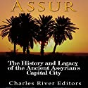 Assur: The History and Legacy of the Ancient Assyrian Empire's Capital City Audiobook by  Charles River Editors Narrated by Scott Clem