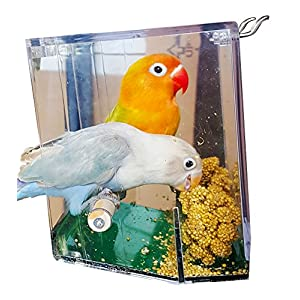 Birds LOVE Bird Feeder Seed Catcher Tray Hanging Cup Food Dish for Cage for Small Birds Lovebirds Cockatiels Canaries Sun Conures with Wooden Perch - Clear and Green Bottom 95