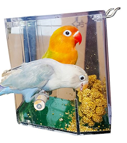 Birds LOVE Bird Feeder Seed Catcher Tray Hanging Cup Food Dish for Cage for Small Birds Lovebirds Cockatiels Canaries Sun Conures with Wooden Perch - Clear and Green Bottom