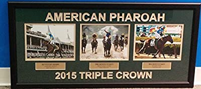 Horse Racing Victor Espinoza Riding American Pharoah Triple Crown Framed Collage