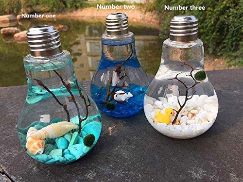bulb jars - 9