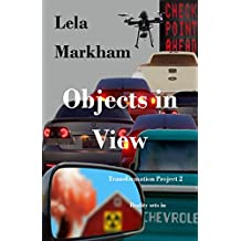 Objects in View (Transformation Project Book 2)
