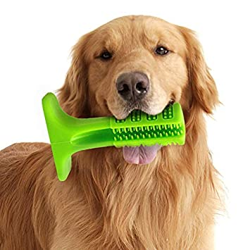 AMAES Cepillo de Dientes del Perro, Palo de Goma Suave Cepillado con Cepillo para Perros, Mascotas, Cuidado Oral, Perrito Limpieza de Dientes (Medium): ...