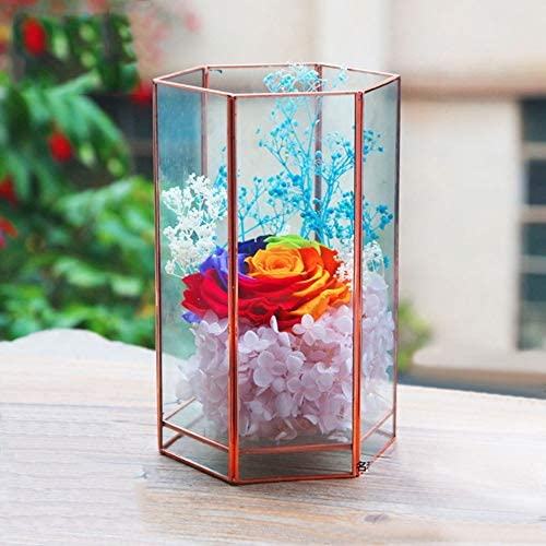 植木鉢 結婚式のコーヒーテーブルの幾何透明なガラスの花瓶で多肉植物 屋内 (Color : Rose gold, Size : 11.5X10X19.0CM)