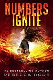 Numbers Ignite (Numbers Game Saga Book 2)