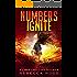 Numbers Ignite (Numbers Game Saga Book 2)
