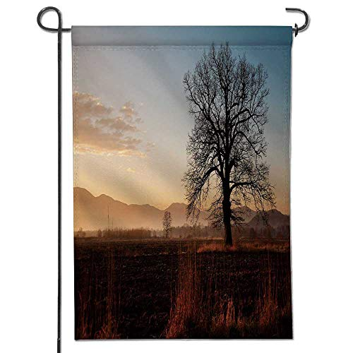 Double Solitaire Deck - Jiahonghome Nice Design Hello Summer Chêne Solitaire sur un paysage Rural en automne Garden Flag with Garden Flag Stopper Double Sided14 x 21