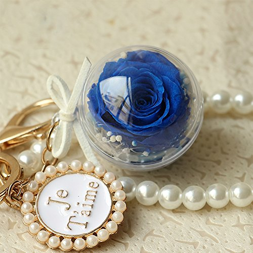 Pearl Gold Plated Bow-Knot Keychains Novelty Preserved Fresh Flower Rose Key Chain for Womens Bag or Car Pendant (Blue)