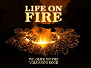 Life on Fire: Wildlife on the Volcano's