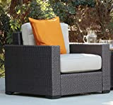 Serta Outdoor Collection Arm Chair with Thick 6 Inch Cushions, Beige/Dark Brown
