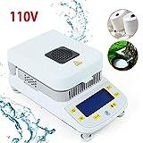QIZHI Hot 110V DSH-50-10 Lab Moisture Analyzer