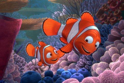 Finding Nemo Movie Poster 24x36 inches Albert Brooks Ellen DeGeneres High Quality Gloss Poster Print 106