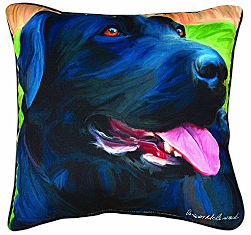 NicholasArt Handsome Black Lab Paws and Whiskers Decorative Square Throw (Black Lab Throw)