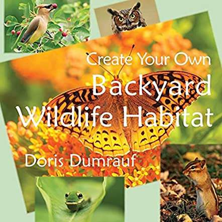 Create Your Own Backyard Wildlife Habitat