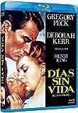 Beloved Infidel (1959) [ Blu-Ray, Reg.A/B/C Import - Spain ]