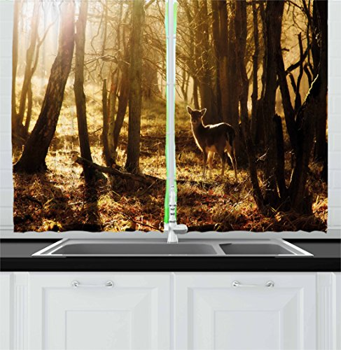 Cabin Decor Kitchen Curtains by Ambesonne, Young Deer at Sunset in the Forest National Park Outdoors Netherlands Photo, Window Drapes 2 Panel Set for Kitchen Cafe, 55 W X 39 L Inches, Yellow Brown