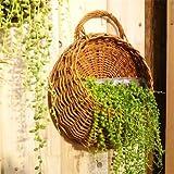 Wall Hanging Flower Basket - Outdoor Hanging Flower Basket - Flower Planter Wall Hanging Basket Ornamental Vases Garden Outdoor Indoor Holder Home Decoration (Indoor Hanging Flower Basket)
