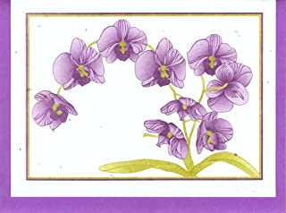 product image for Grow A Note® Orchid 2011 Cards 4-pack