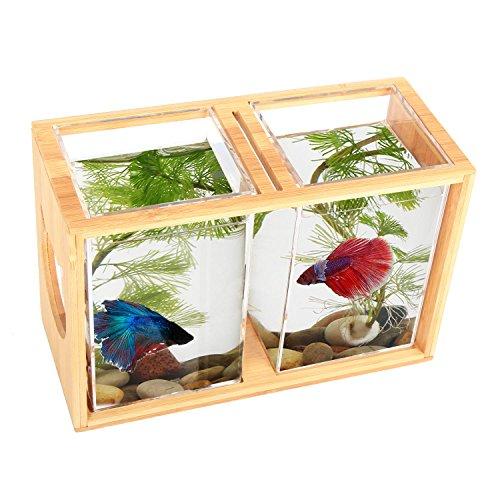Fish Bowls Bamboo Segarty Unique Cool Design Small Square Glass Vase Creative Aquarium Kit