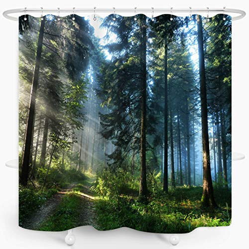 ZXMBF Trees Forest Sunlight Shower Curtain Straight Tall Trees Sunshine Attractive Nature Landscape Waterproof Fabric Bathroom Decor 72x72 Inch Green Plastic Hooks 12 PCS (Nature Shower Curtains Trees)