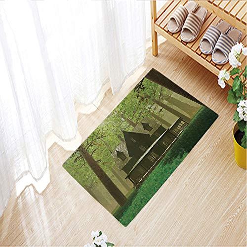 - Non-Slip Doormats Polyester Door Mat Entrance Rug Shoes Scraper Floor Indoor/Outdoor,19.7