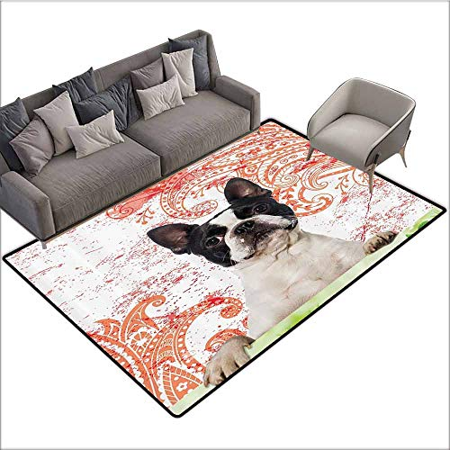 Outdoor Floor Mats Purebred Cute,Boston Terrier Artwork Posing on Grass Decorative Picture Design Black White Green and Red Print,Machine Washable 60