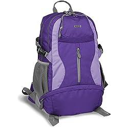 J World Elpaso 35l Climbing Backpack in Purple