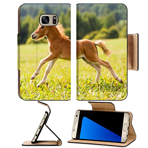 liili-premium-samsung-galaxy-s7-edge-flip-pu-leather-wallet-case-foal-mini-horse-falabella-image-id-