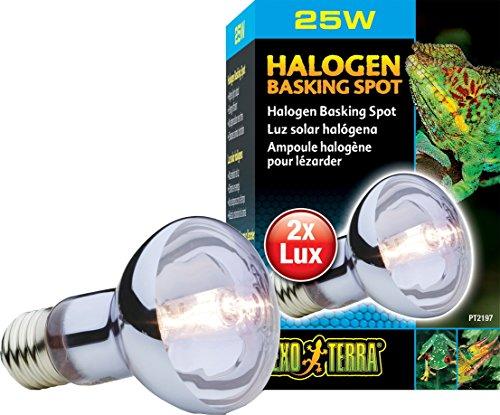 - Exo Terra Sun Glo Daylight Halogen Lamp, 25-Watt