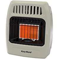 WORLD MKTG OF AMERICA/IMPORT KWD215 2 Plaque Dual Gas Wall Heater