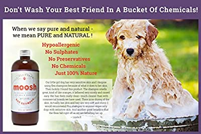 Natural Dog Shampoo. Anti-Bacterial-Anti-Fungal- Anti-Itch , Promotes Healthy Hair and Skin, Helps Hot Spots. Shea Butter, Neem and Argan Oil, Aloe Vera and Bentonite. Concentrated-Organic by Moosh