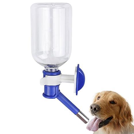 YLucky Dogs - Dispensador de botella de agua portátil de 500 ml para viajes, alimentador