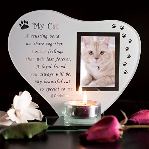 My Cat - Inspirational poem, candle and photo holder glass memorial plaque by Thorness (Memorial Candles Picture)