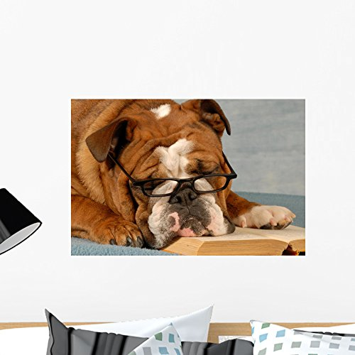 Darling Eyeglasses - Wallmonkeys Dog Obedience School English Bulldog Reading a Novel Wall Decal Peel and Stick Graphic WM245734 (24 in W x 16 in H)