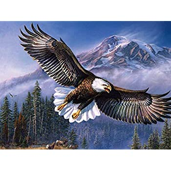 Amazon spirit up art one set modern giclee prints artwork flying eagle oil painting on canvas modern wall art pictures for home decoration wooden framed 12x16 inch framed altavistaventures Gallery