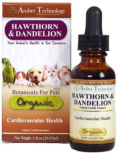 Amber Technology Hawthorn and Dandelion, 1 oz