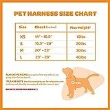 Best Pet Supplies Voyager Step-in Flex Dog