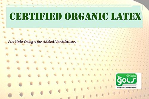 Latex Organic Mattress - 8