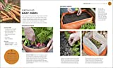 Beginner Gardening Step by Step: A Visual Guide
