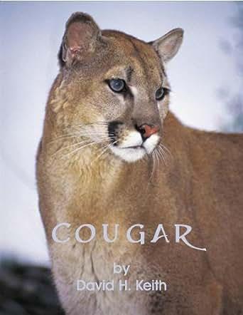 Dp cougars