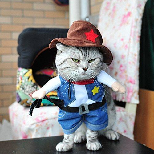 Cute Cat Clothes, Halloween Pet Dress Small Dog Clothes Coat Winter Costume Funny Upright Cowboy Jacket Hat for Cat and (Diy Cat Costumes Pet)