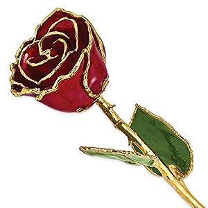 Allmygold Jewelers Burgundy Long Stem Dipped 24K Gold Trim Genuine Rose
