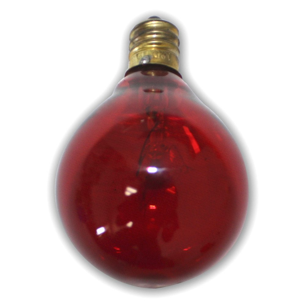String light company incandescent light bulb pack of 25 - Amazon Com String Light Company G400525r Red G40 Globe String Light Bulb With E12 Base 5 Watt Pack Of 25 Incandescent Bulbs Garden Outdoor
