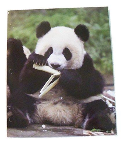 staples-two-pocket-paper-folder-animal-folder-panda-snack-break