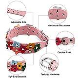 Riccioofy Dog Collar for Small and Medium Dogs