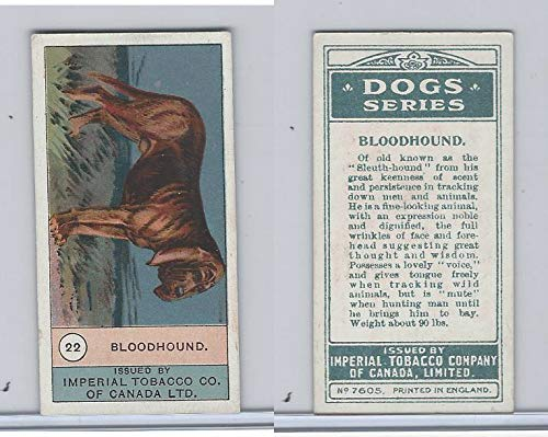 - C7 Imperial Tobacco Company, Dog Series, 1920's, 22 Bloodhound