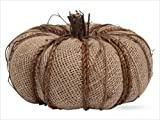 Burlap Pumpkin Natural From Tag